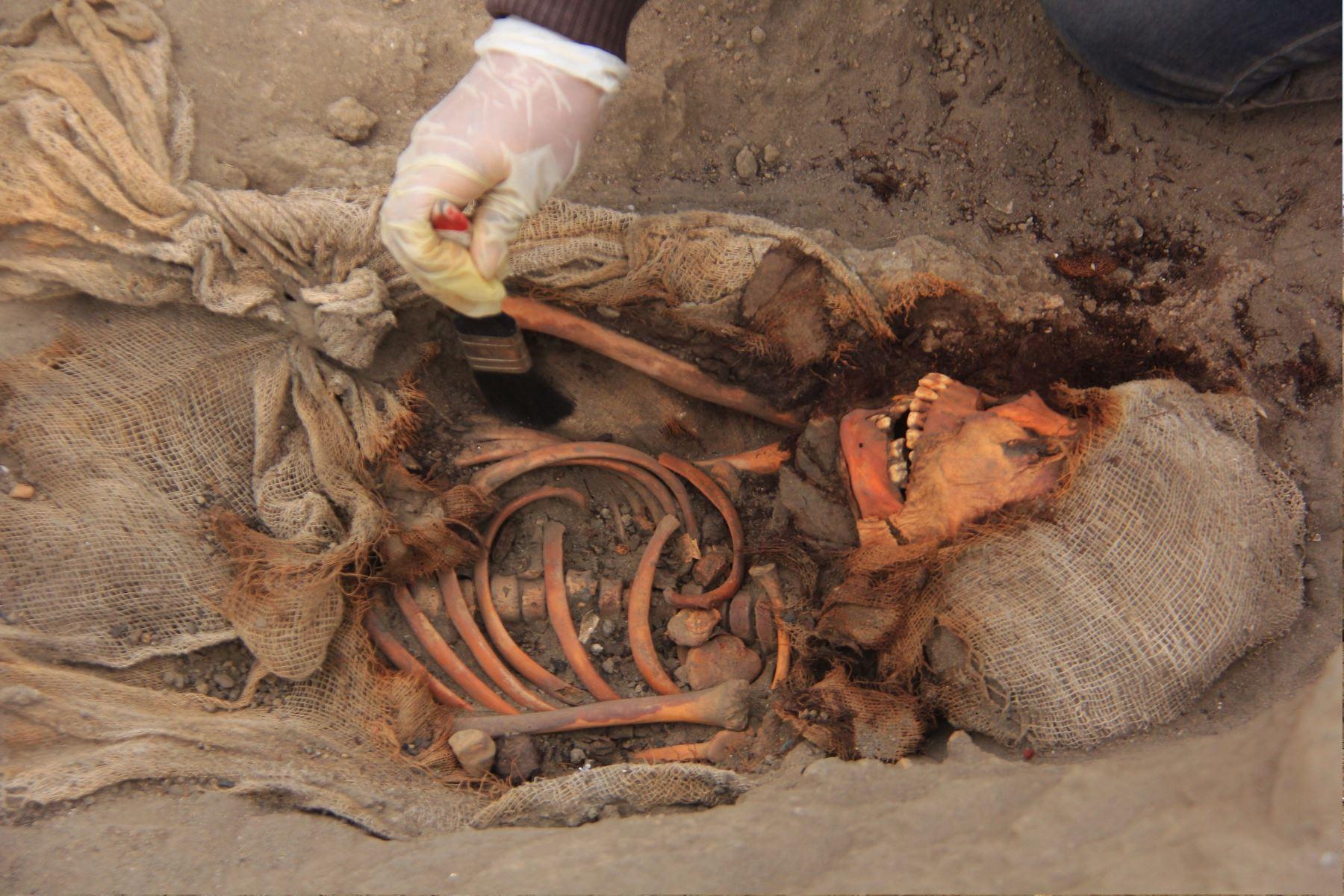 جثة طفل
