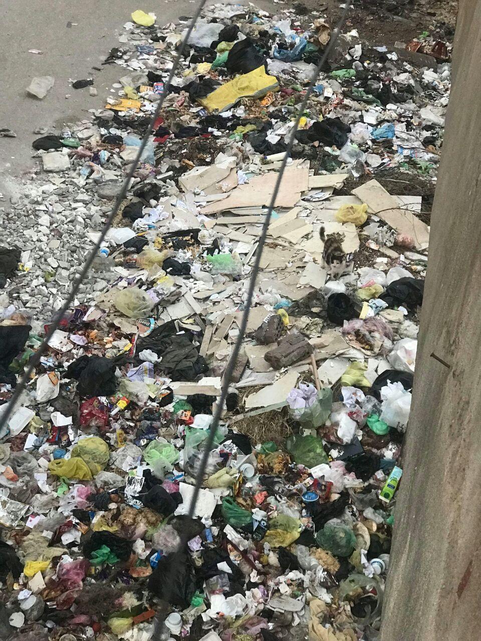 القمامة بجوار الوحدة الصحية بمنطقة الورش (2)