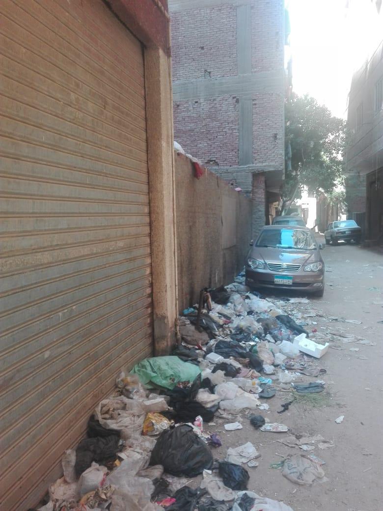 القمامة بشارع الورشة فى الطالبية  (1)