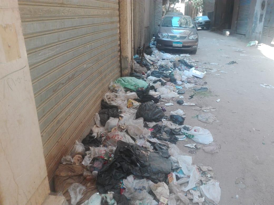 القمامة بشارع الورشة فى الطالبية  (3)