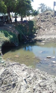 انخفاض منسوب المياه بالترعة