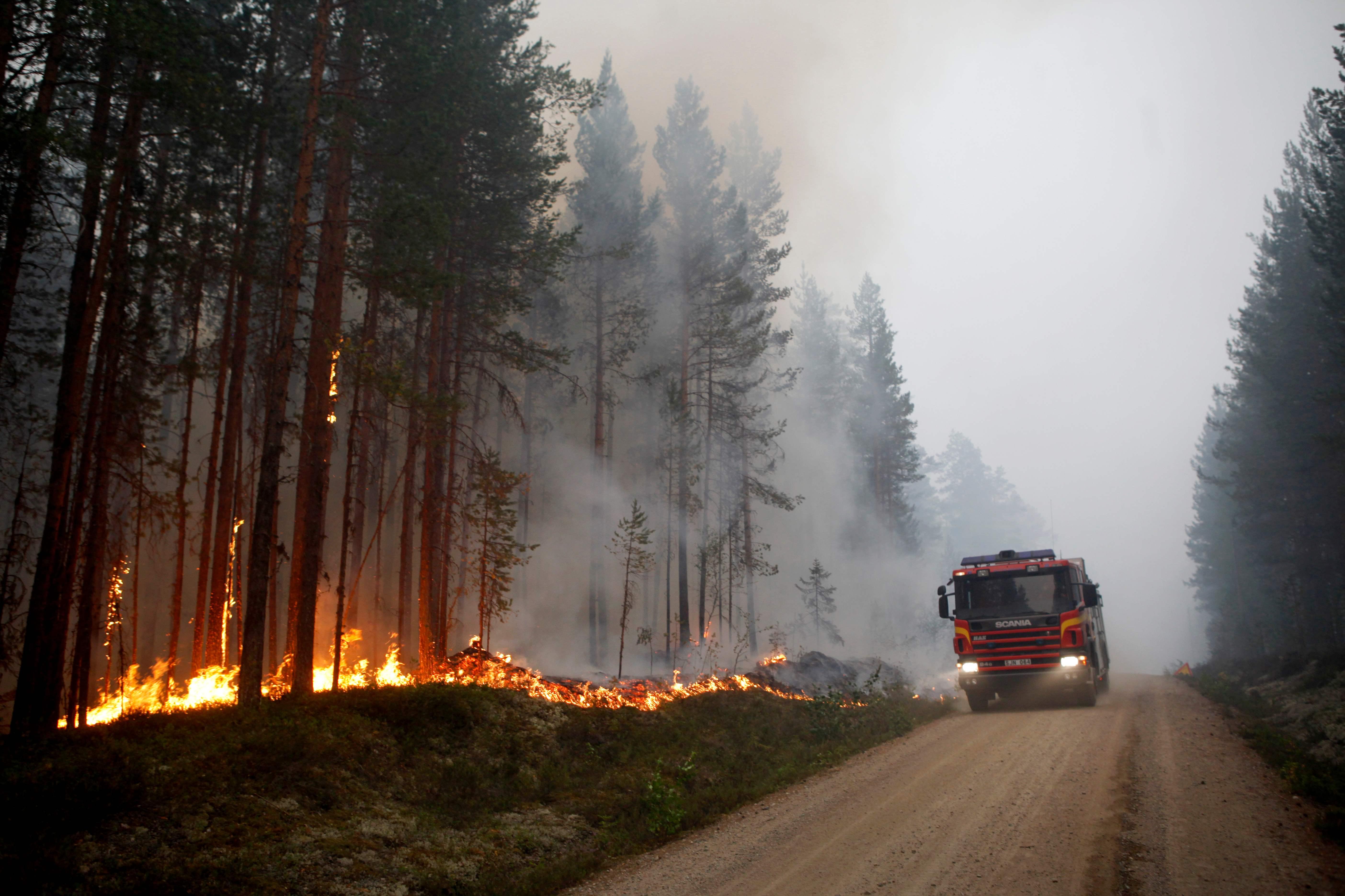 سيارات الاطفاء تسعى للسيطرة على النيران