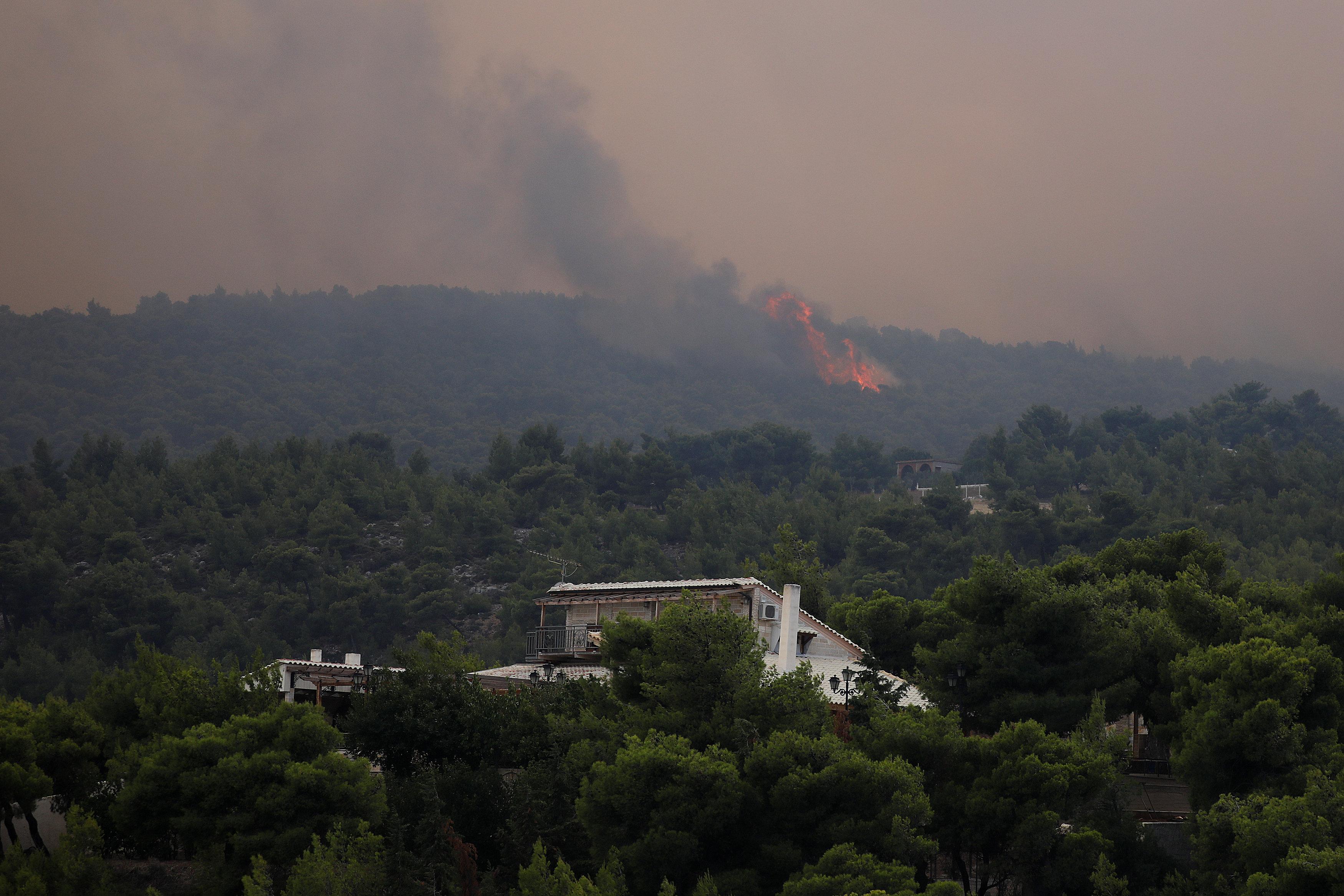 حرائق غابات الصنوبر باليونان