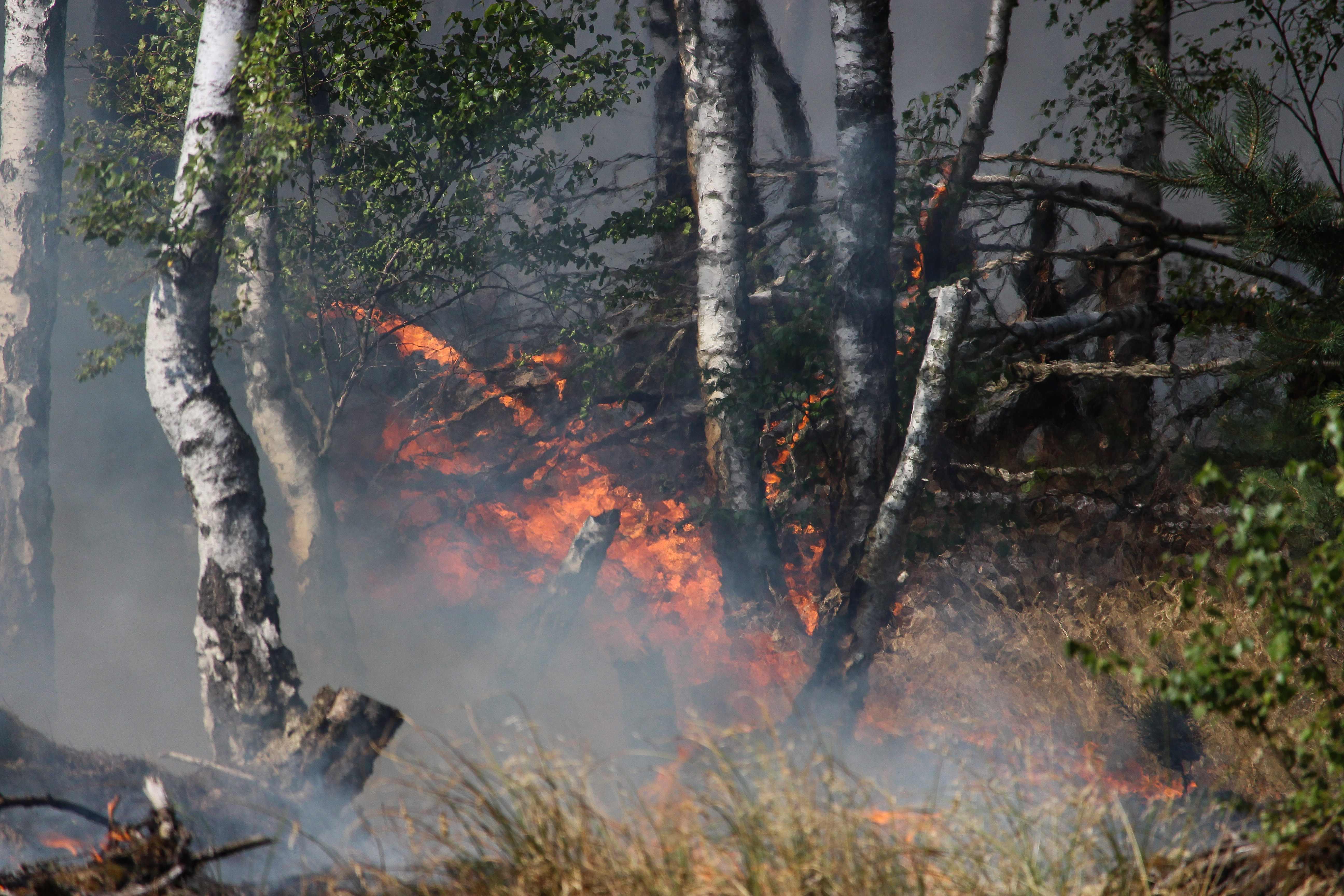 الحرائق في اليونان