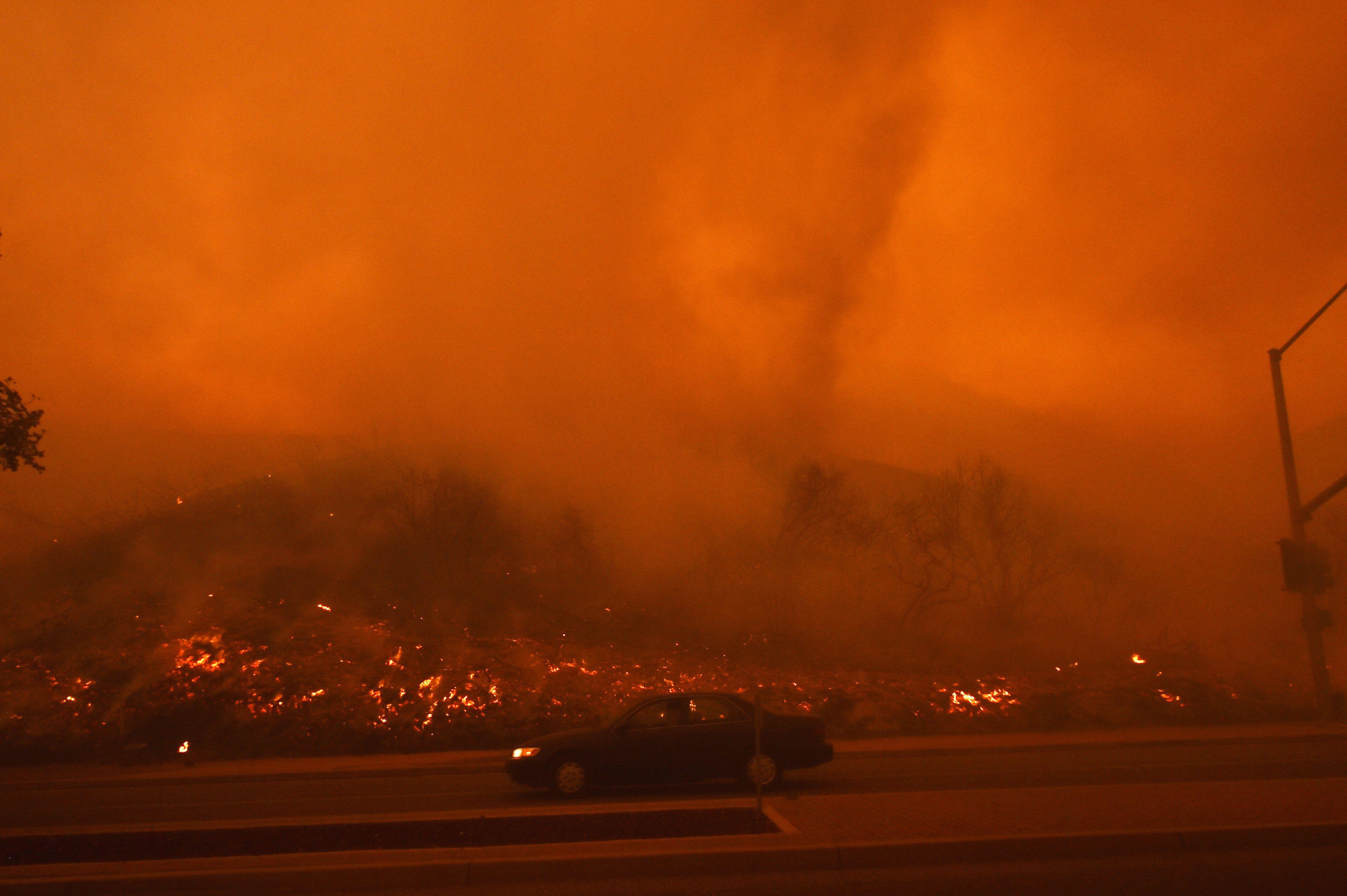 النيران والدخان فى حرائق الغابات