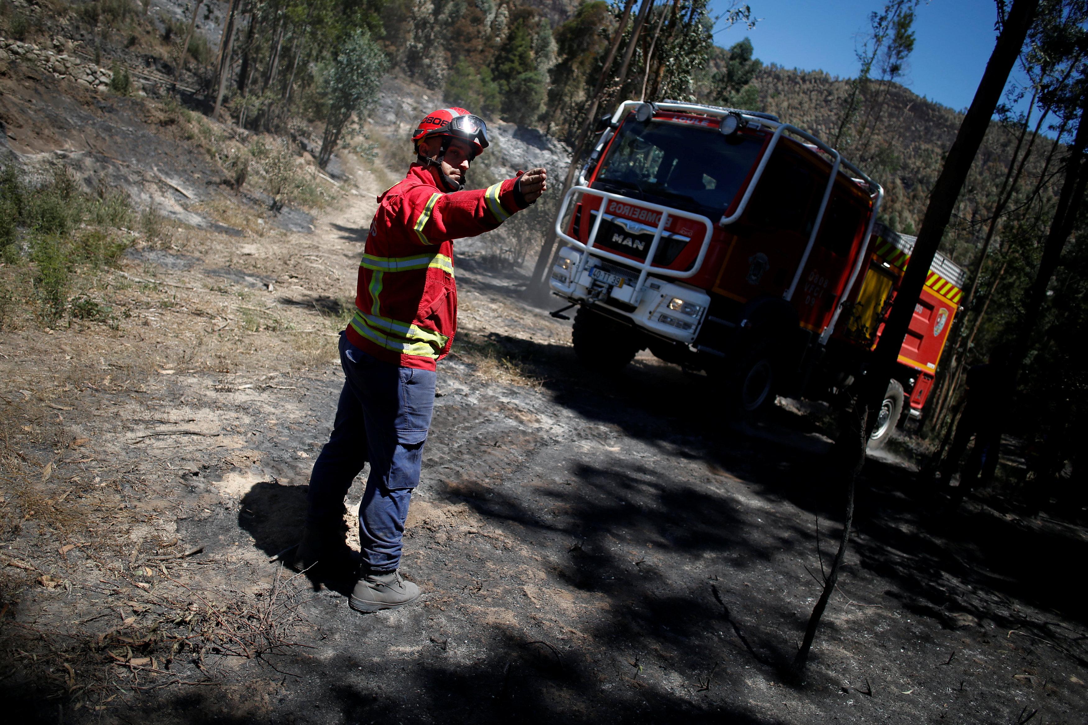 سيارات الحماية المدنية أثناء السيطرة على حرائق الغابات
