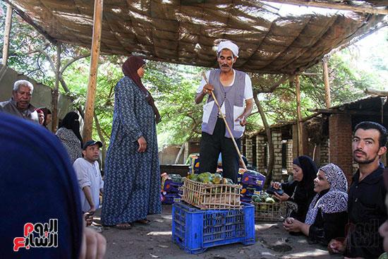 صور حصاد المانجو (25)