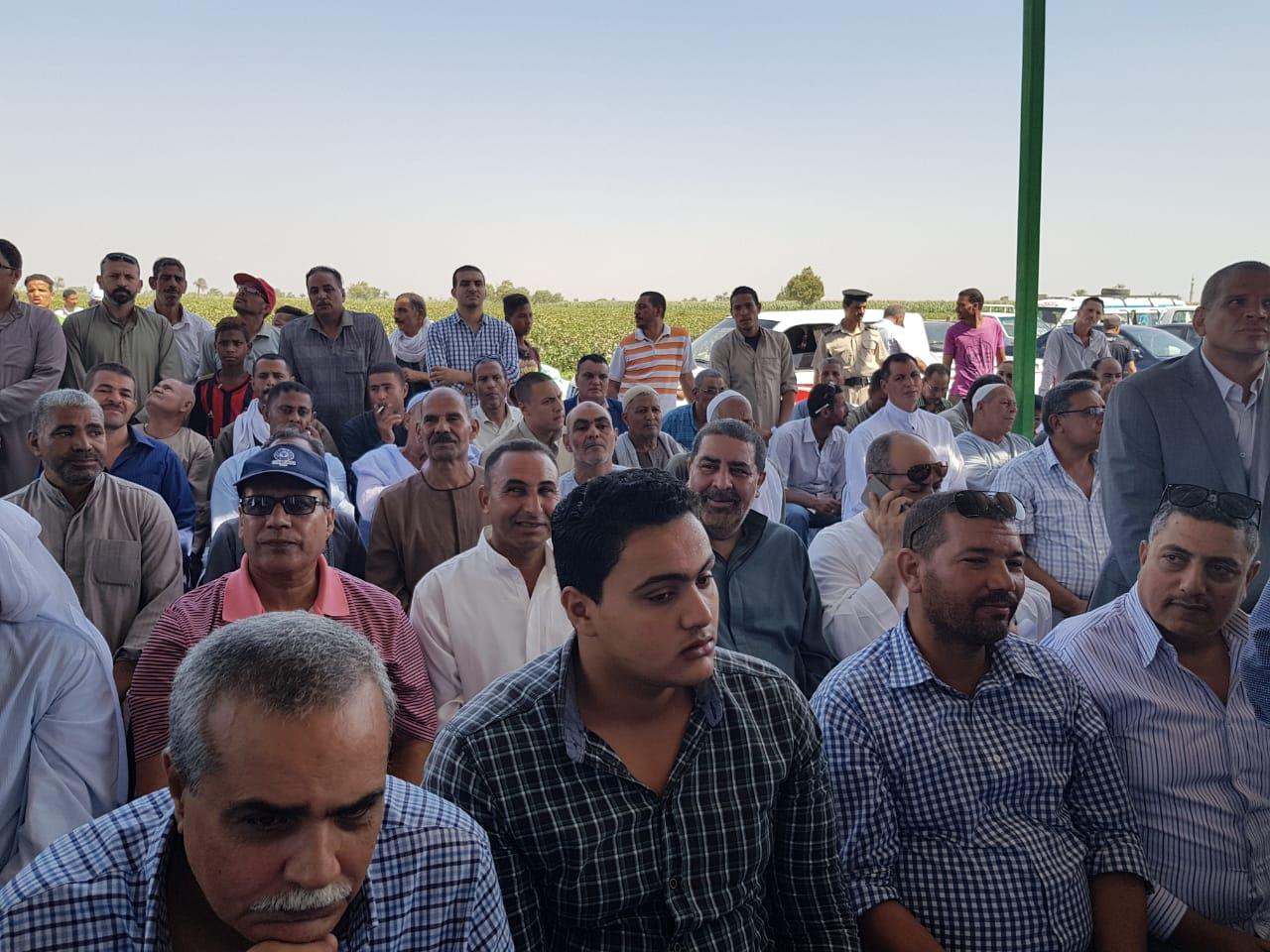 وزير الزراعة ومحافظ المنيا بموسم جنى القطن (6)