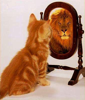 ثقة بالنفس