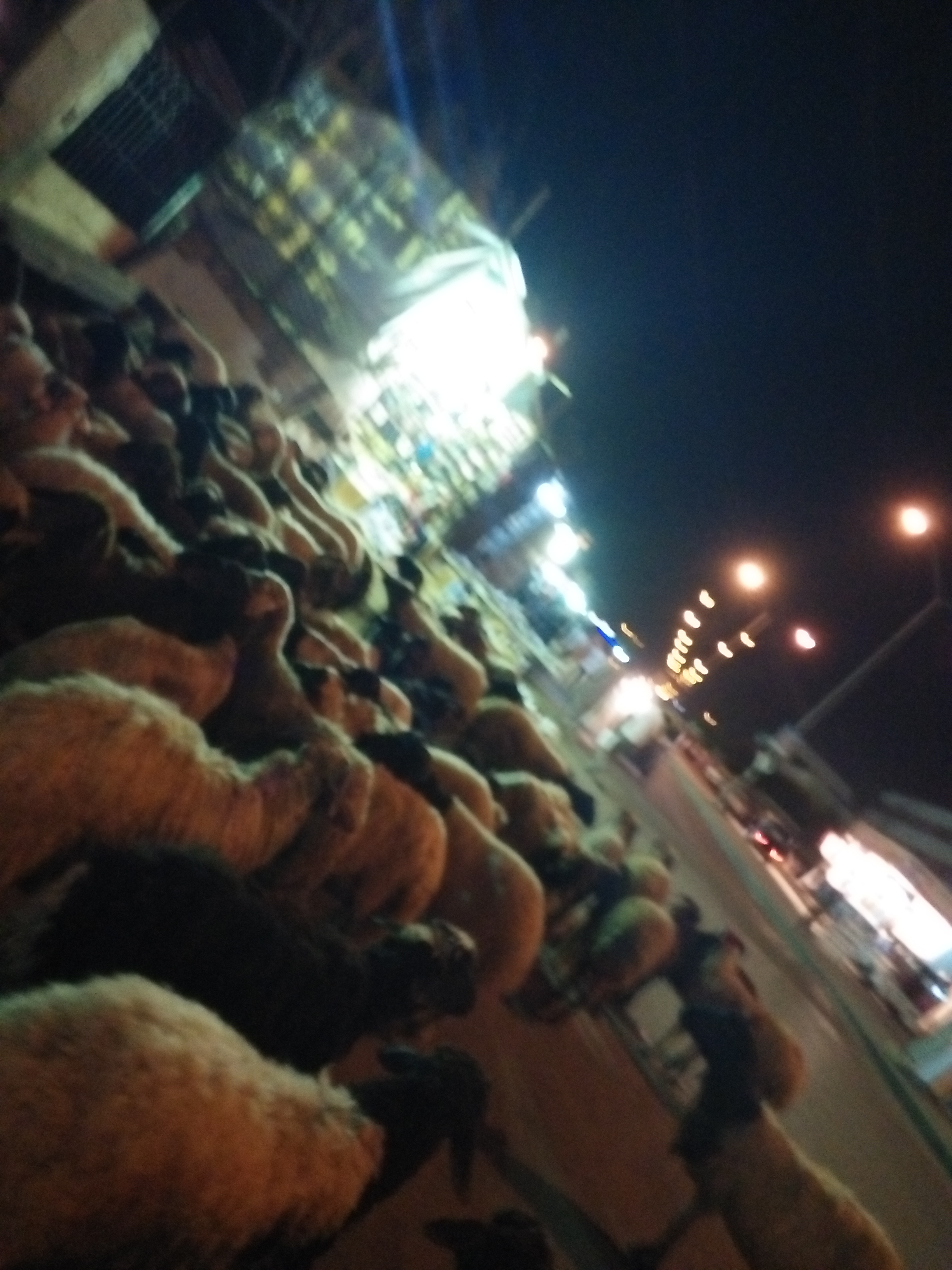 تعدد صور الاهمال فى شوارع اكتوبر  (2)