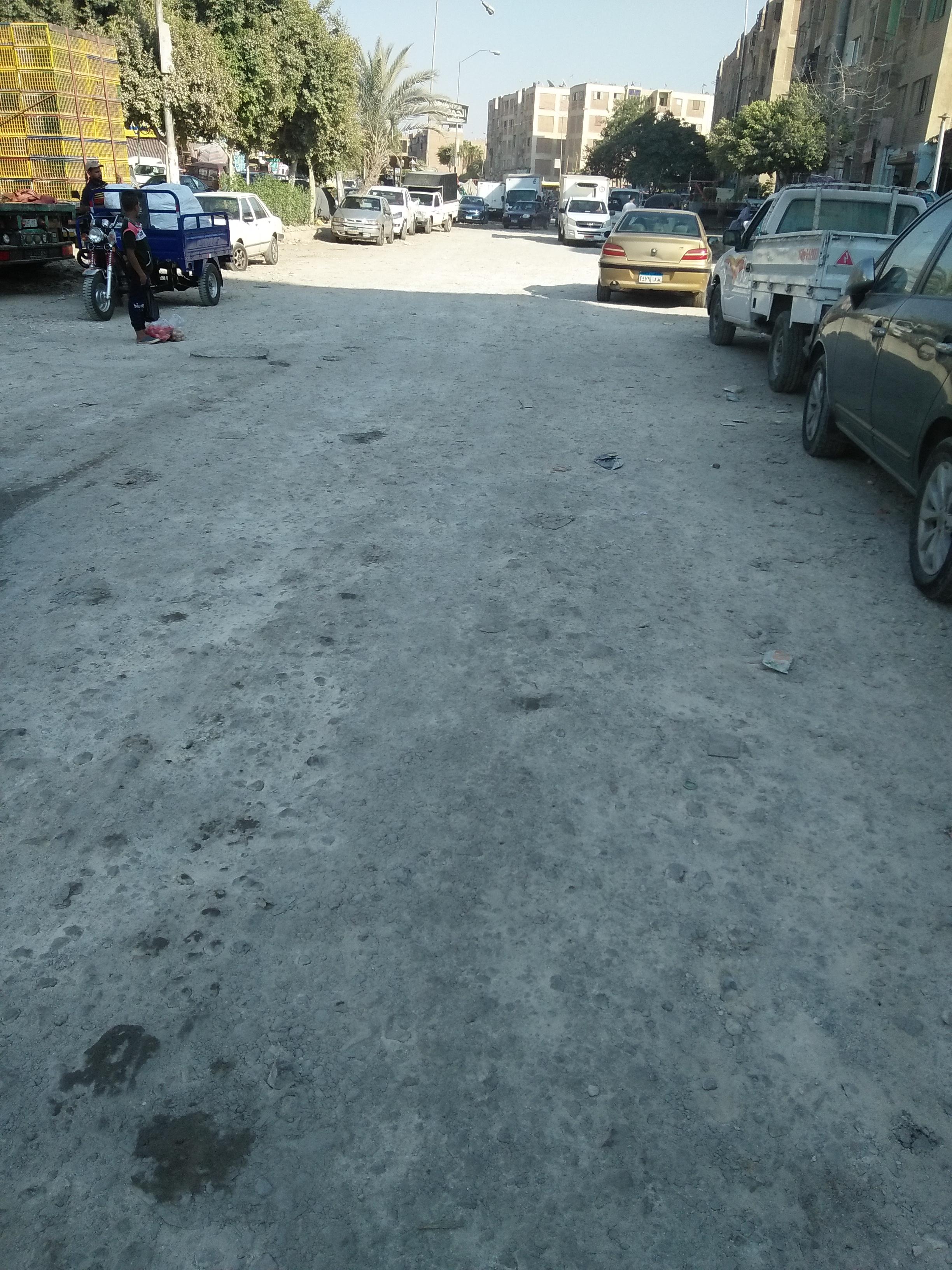 تعدد صور الاهمال فى شوارع اكتوبر  (5)