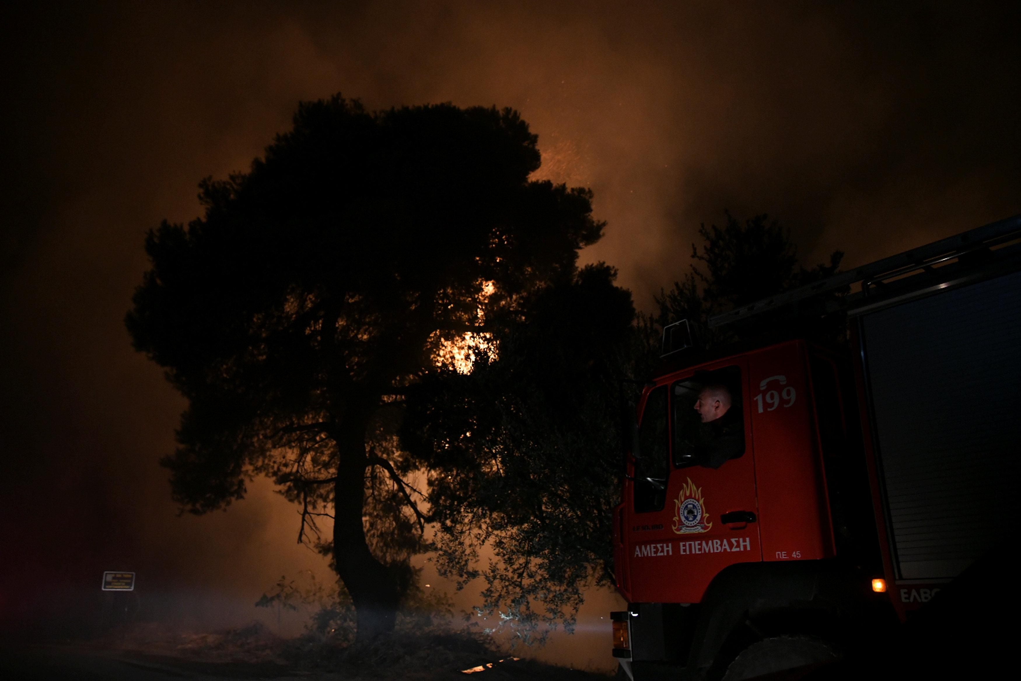 جانب من حرائق الغابات فى اليونان