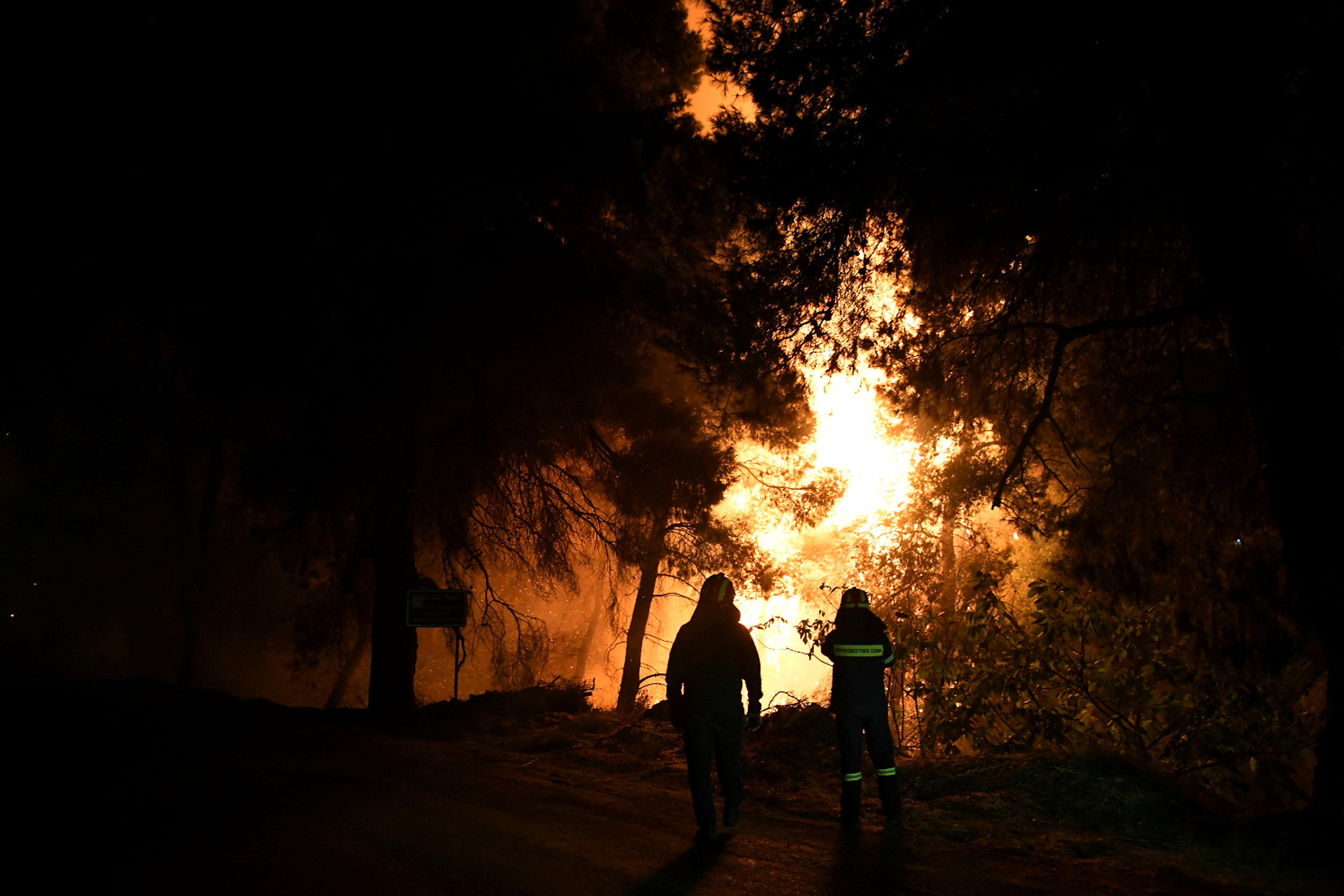 تجدد حرائق الغابات فى اليونان