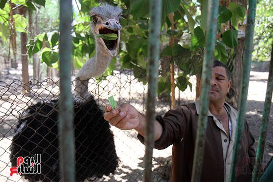 صور حديقة الحيوان و الفسطاط (42)