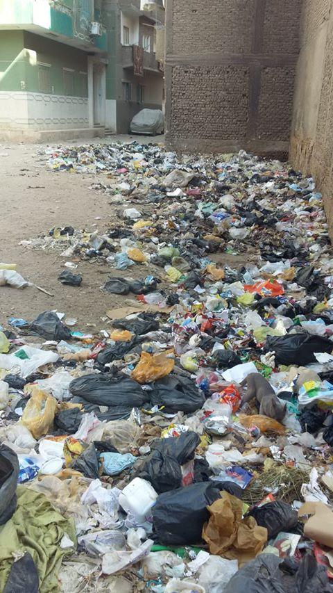 انتشار القمامة بشارع الجزيرة مركز جرجا سوهاج