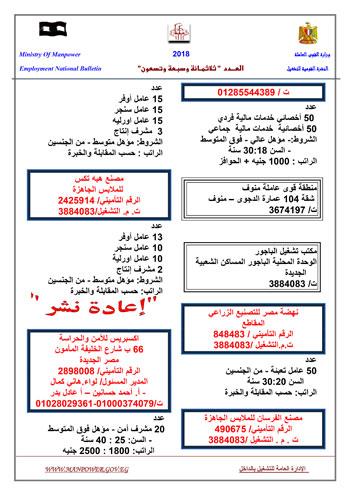 820182012232080-jornal_new_in_397_in-6