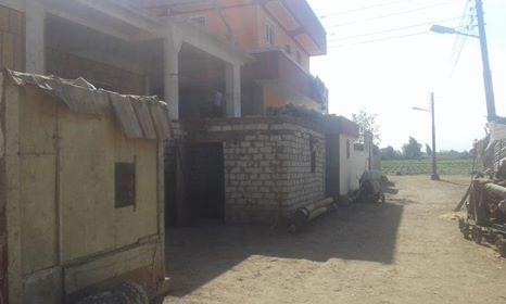 سوء الخدمات والمواصلات بقرية ميت الليث هاشم فى المحلة   (6)