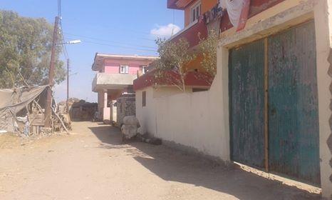 سوء الخدمات والمواصلات بقرية ميت الليث هاشم فى المحلة   (2)