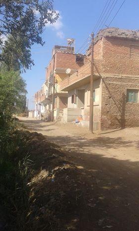 سوء الخدمات والمواصلات بقرية ميت الليث هاشم فى المحلة   (5)