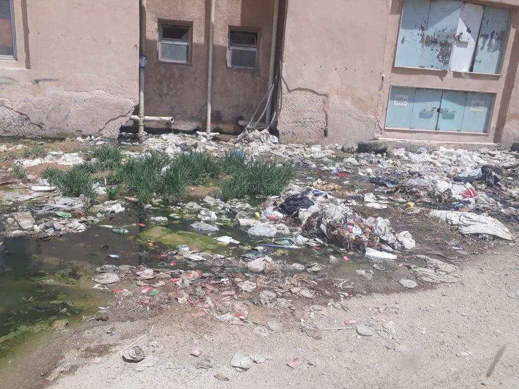 انتشار القمامة فى حدائق الاهرام  (1)