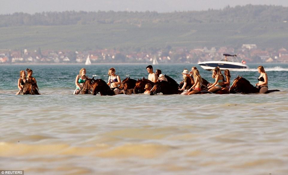 السير بالخيول داخل المياة