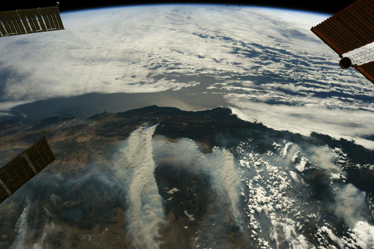 جانب من حرائق الغابات فى كاليفورنيا