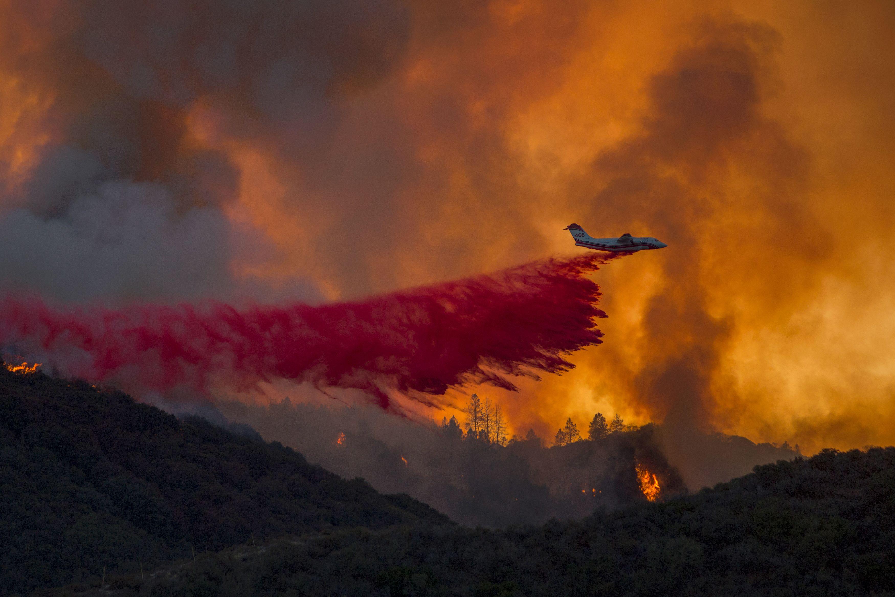 طائرة إطفاء تحاول السيطرة على حريق الغابات