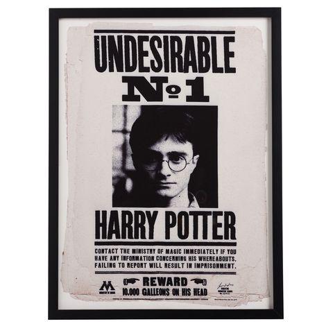 تابلوه بصور هارى بوتر