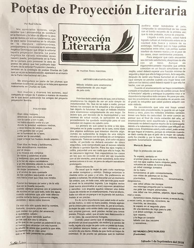 الصحيفة المكسيكية (1)