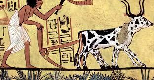 التقويم الفرعونى