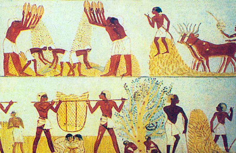 التقويم الفرعونى عند المصرى القديم