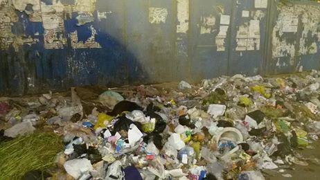 القمامة بشارع غرب السكة الحديد بعين شمس (2)