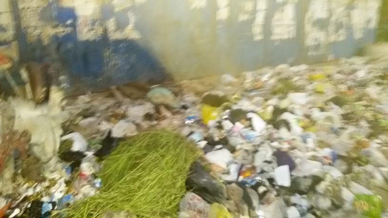 القمامة بشارع غرب السكة الحديد بعين شمس (4)