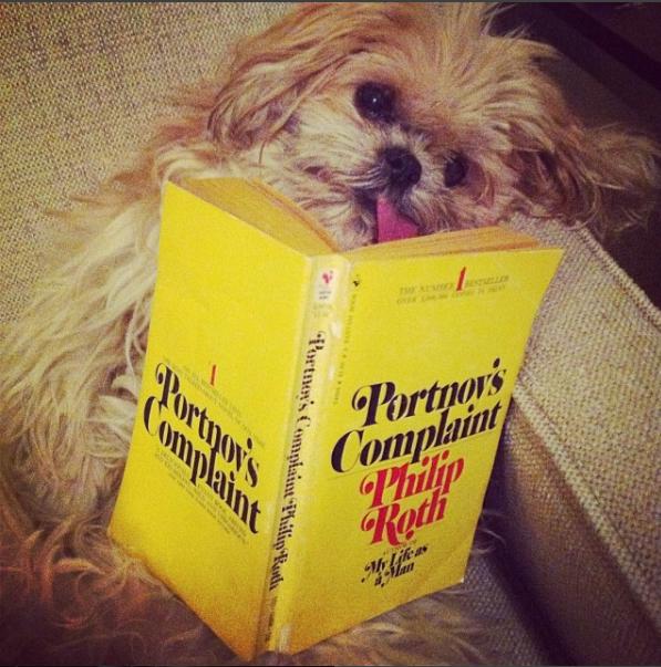 مارنى تمسك كتاب