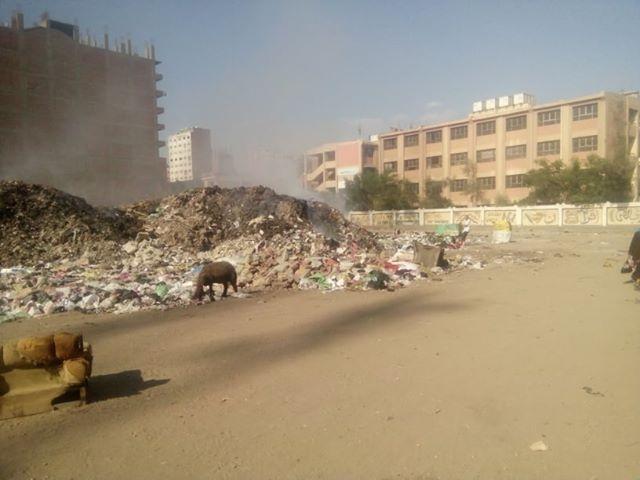 تحويل أرض مجمع مدارس إلى مقلب قمامة بشارع العشرين فى فيصل  (1)