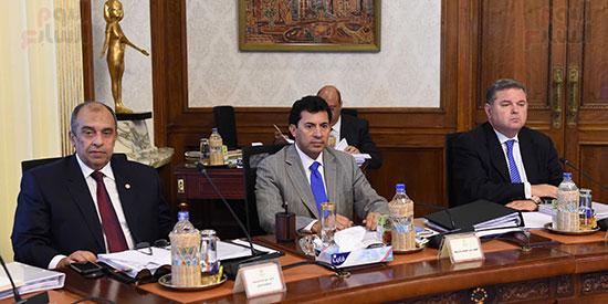 صور مجلس الوزراء (17)