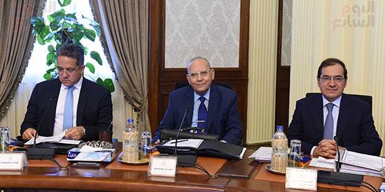 صور مجلس الوزراء (21)