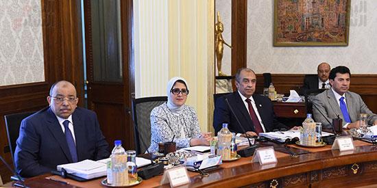 صور مجلس الوزراء (16)