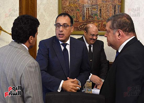 صور مجلس الوزراء (11)