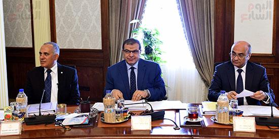 صور مجلس الوزراء (15)