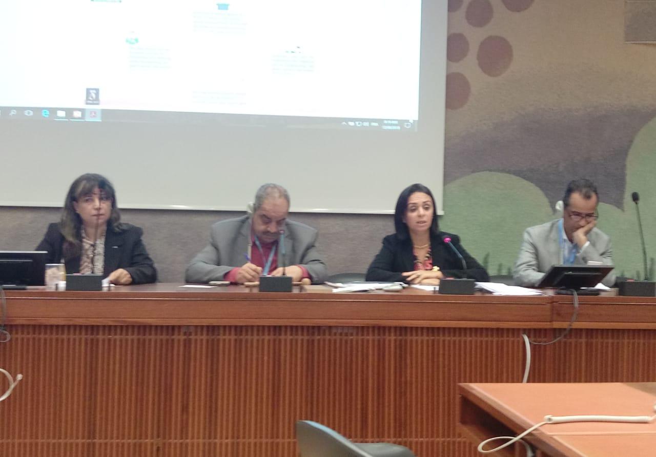 ندوة حقوق المرأة في مصر والبحرين وقطر