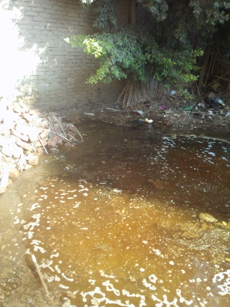انتشار مياه الصرف بشوارع فرسيس فى الغربية (1)
