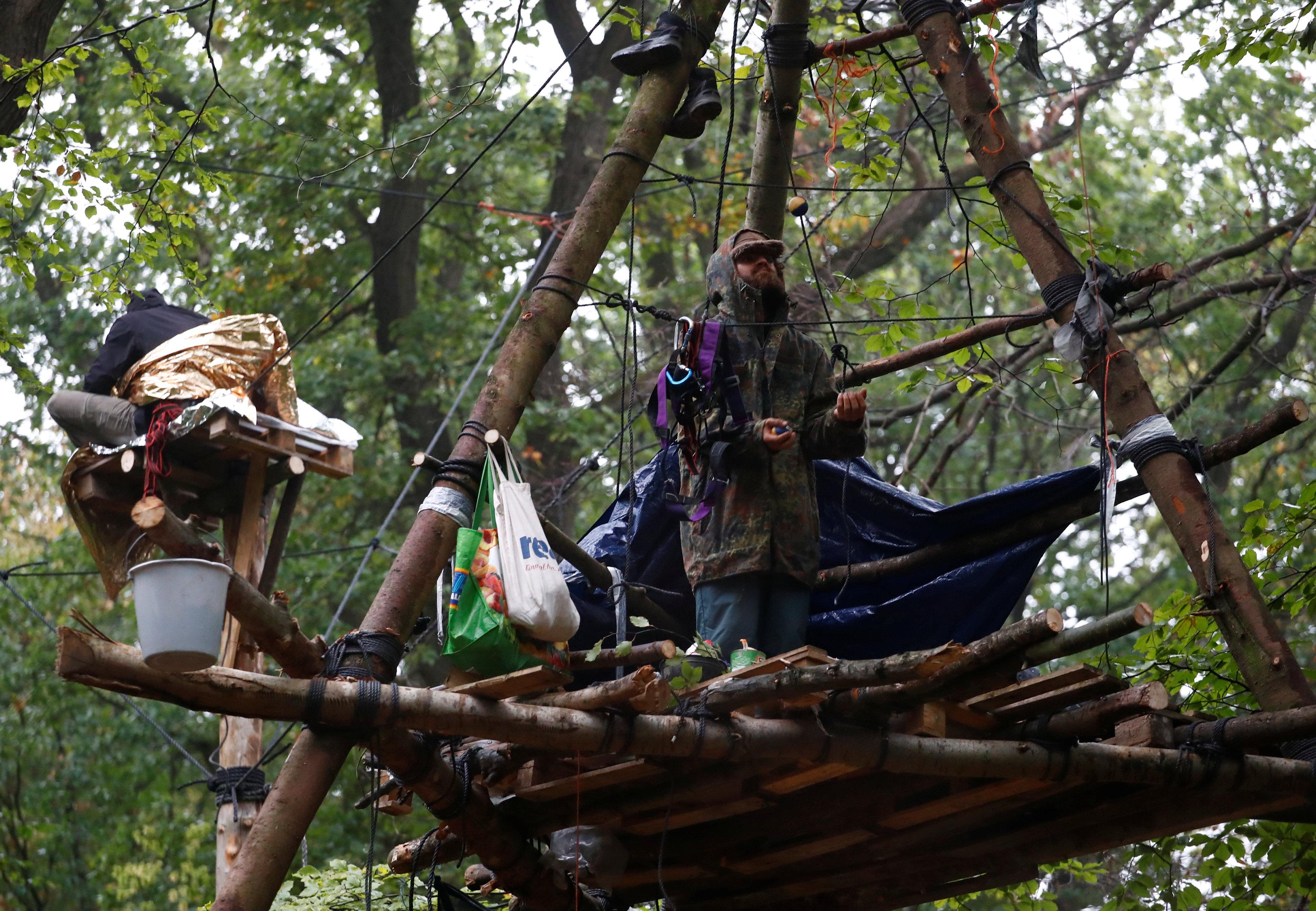 محتجون يصنعون بيوتا على الأشجار