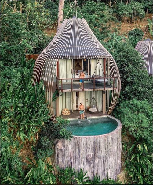 حمام سباحة لغرفة فى احد الفنادق فى الطبيعة