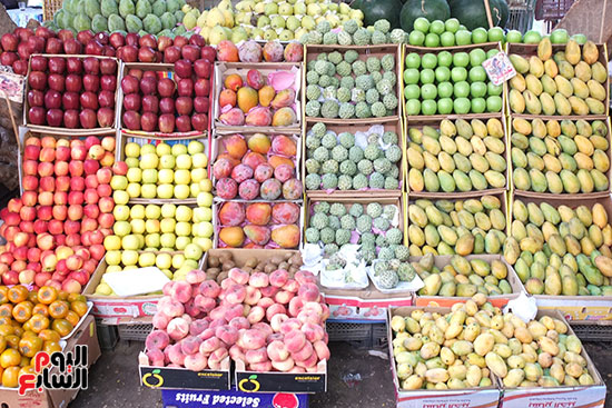 Machines for processing fruits and vegetables (9)