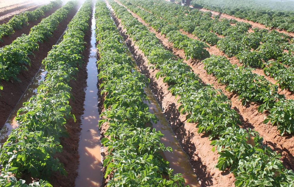 نقص المياه يهدد العالم (3)