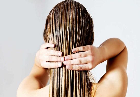 الشعر الرطب
