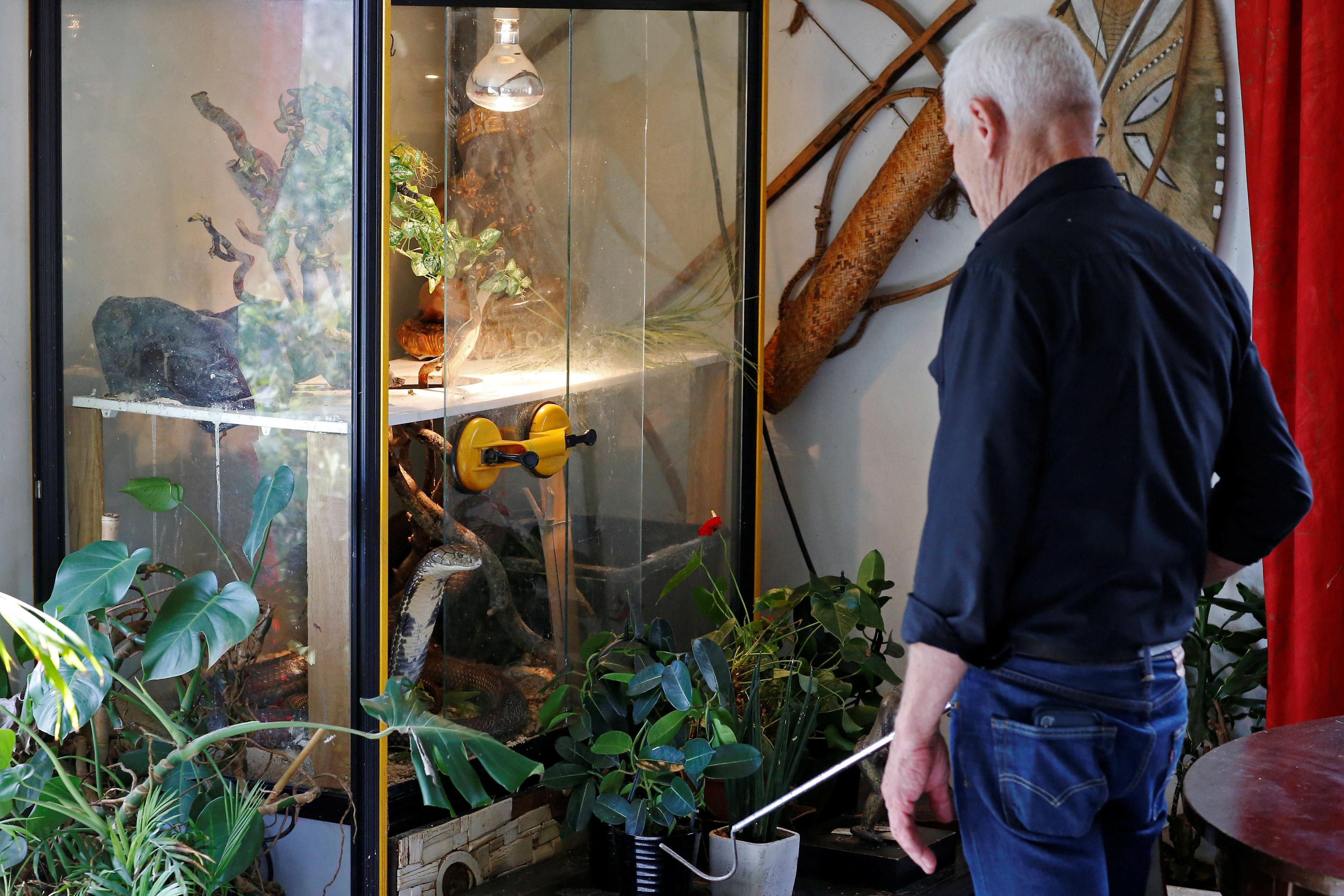 جيليت يتابع بعض الحيوانات التى يقتنيها فى منزله