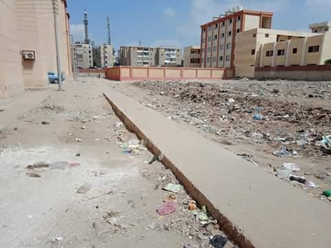 القمامة بشوارع مدينة الدلنجات  (4)