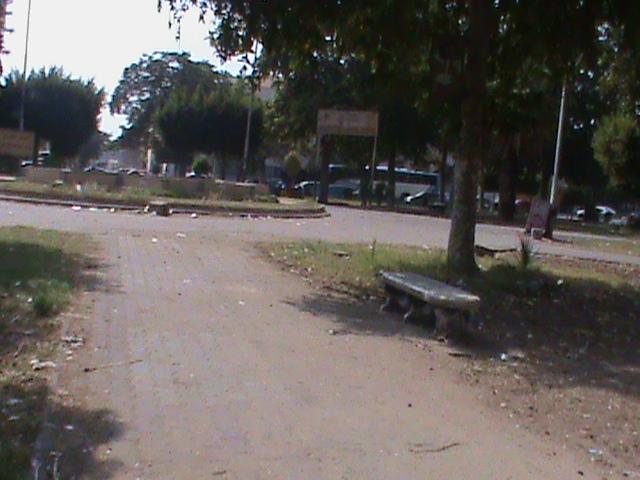 القمامة تحاصر الميدان